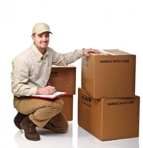 mover checking moving boxes